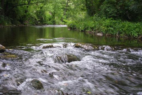 Djiki reka Uvac