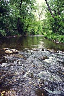 Djiki reka Uvac 2