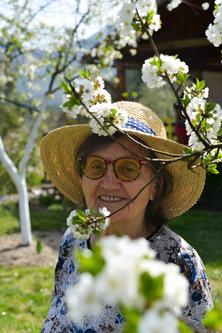 Djiki obojena prolećem