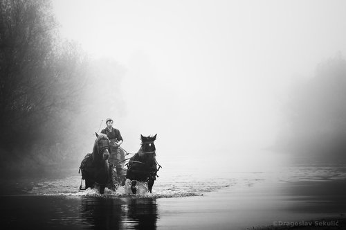 DragoslavS RIDER OF THE MIST