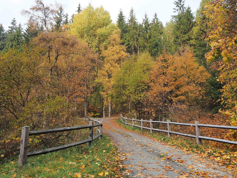 boje jeseni '2