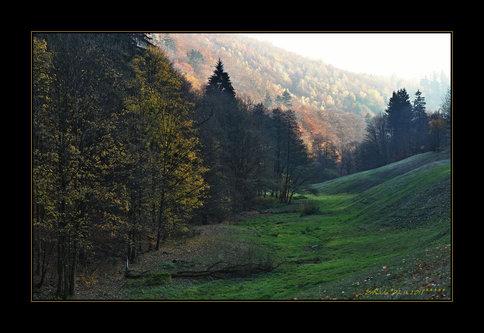 Drrado magla padnala na dolina....