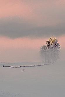 Drrado zima