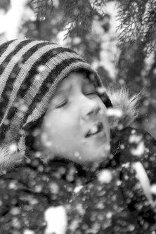 Fica_Bg Prvi sneg