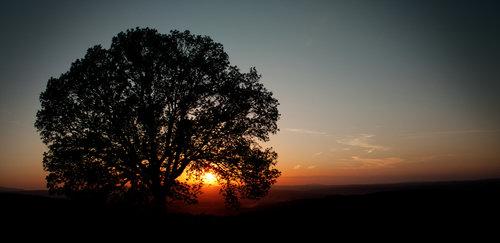 Filip zalazak sunca