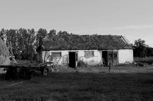 GoranKulezic Tužna priča jednog seljaka