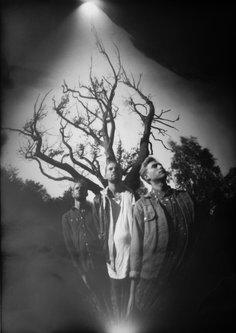 Hurikejn Grupni portret i drvo II
