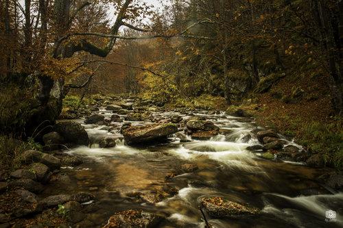 ISphoto Jesenja reka