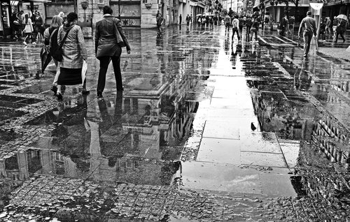 IsakovD black&white reflection