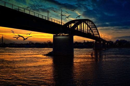 IsakovD most