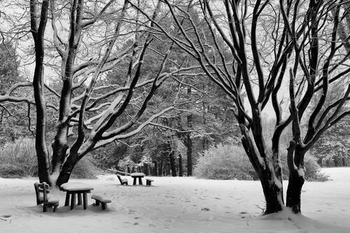 JanNS Moja Fruška... i zimi lepa