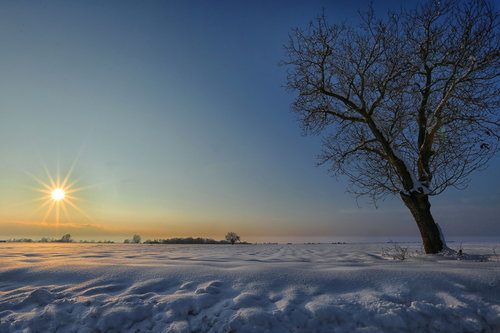 JanNS Panonska zima