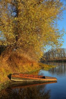 JanNS Sasvim jesenje...
