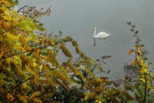 JanNS Jesenja plovidba