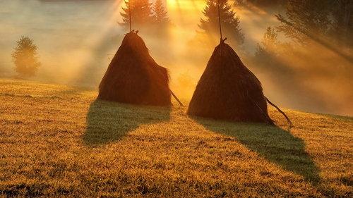 JanNS Magija planinskog jutra