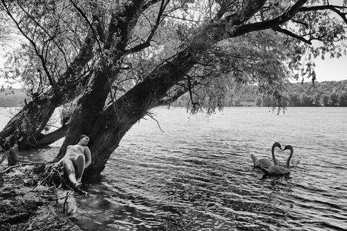 JanNS Dunav u srcu