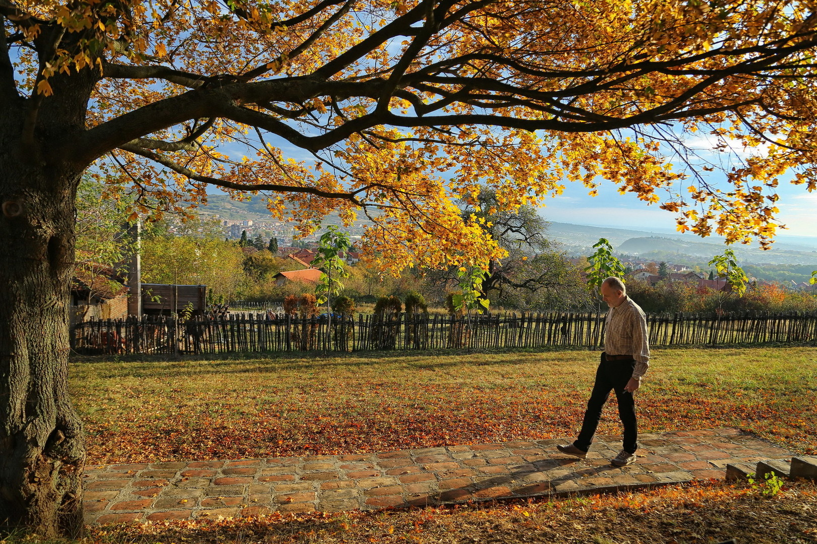 Jesenji koraci