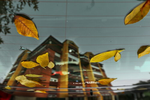 JanNS Jesen u gradu