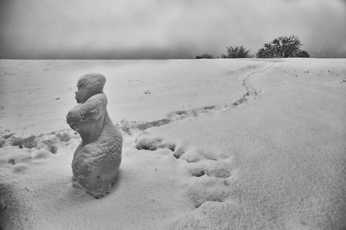 JanNS ... Snežana