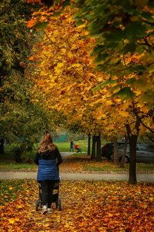 JanNS Jesenji život