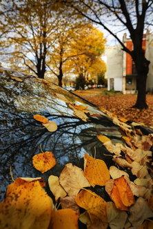 JanNS Na tragu jeseni