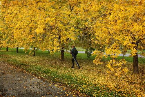 JanNS Od zlata jesen