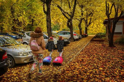 JanNS Volimo jesen