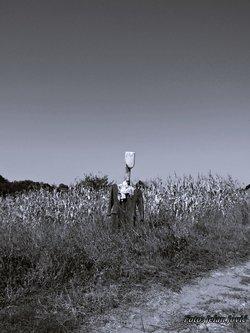 Jekisa Scarecrow