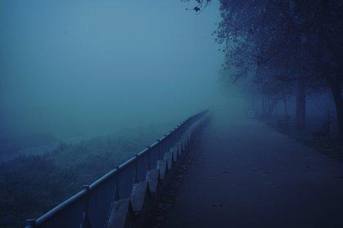 JovicaPhotography Fog