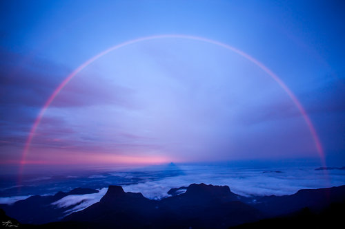 Kamasi Adam's Peak Rainbow