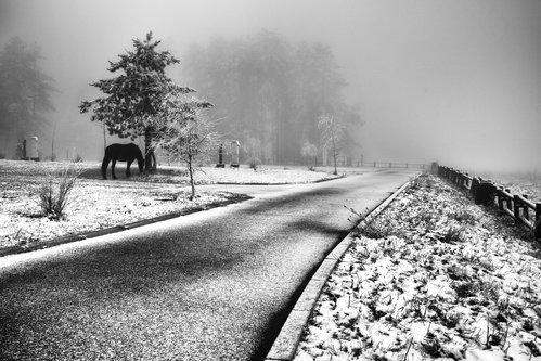 Kecalkoatl winter tale