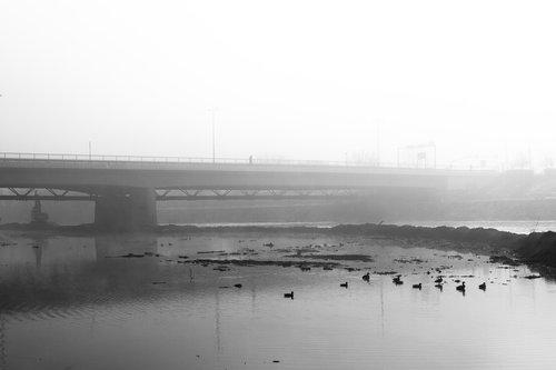 KostaK Ibarski most