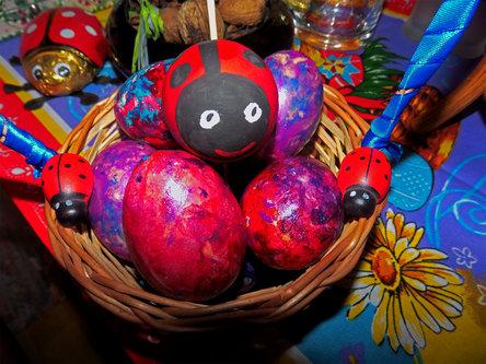 Krisstalcic Ladybug in eggs
