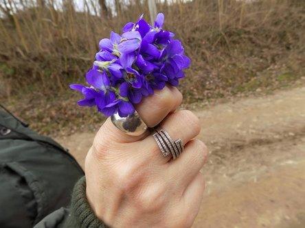 Krisstalcic Violets