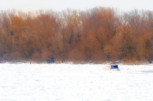 LesaBg Zima u Zemunu