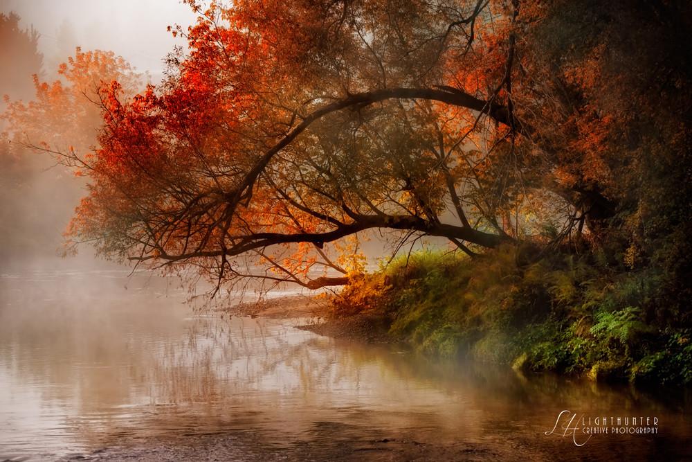 Autumnal substance ...