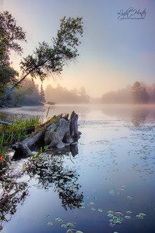 LightHunter Kingsbury Lake