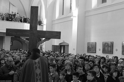 Livancic Drvo križa
