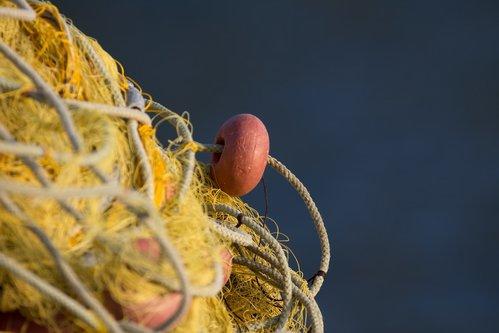 Marezato Ribareva mreza