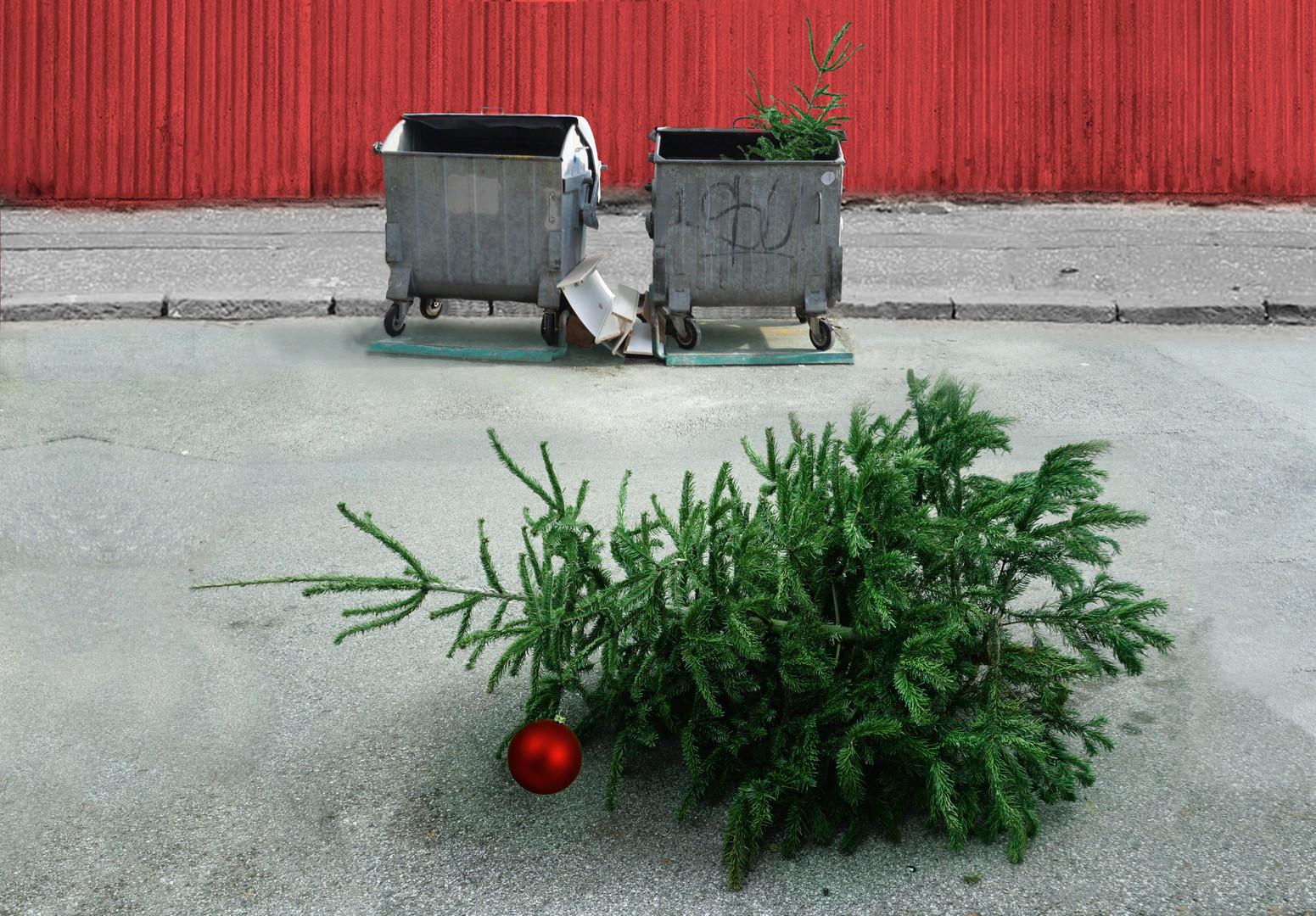 Christmas tree / Božićno drvce