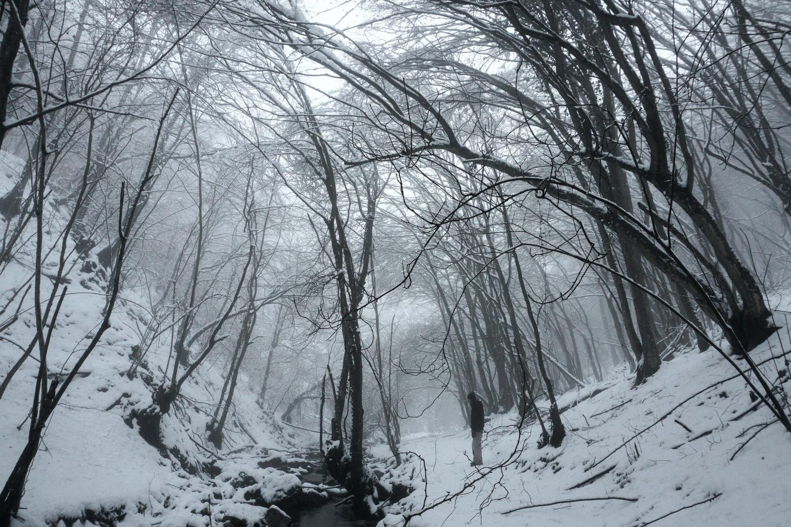 Winter story / Zimska priča