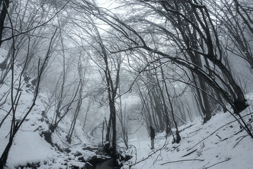 Marinsky Winter story / Zimska priča