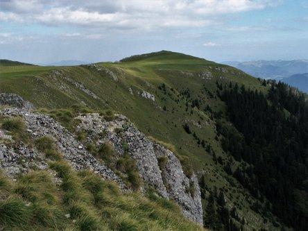 Marisimo Vlašićka 2