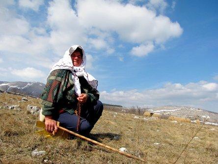 Marisimo Čobanica sa bolnom nogom