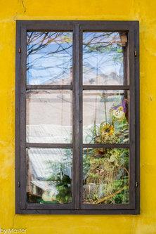 Master Žuta kuća