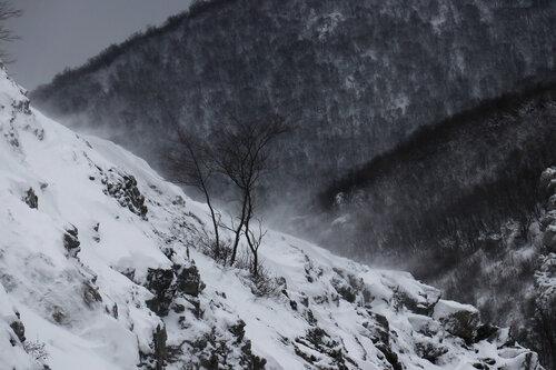 Merina Snježni Velebit