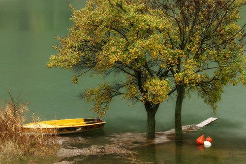 Merina Vrijeme kiša