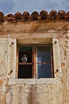 Merina Svaki prozor svoju priču ima