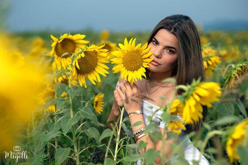 Migelli Sunflowers