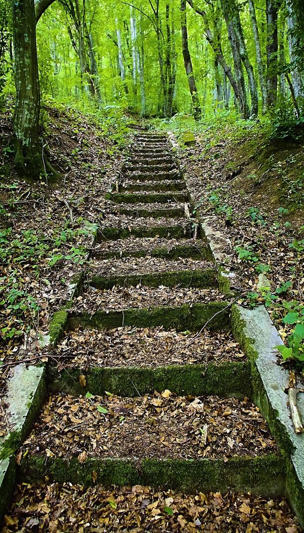 Stepenice za nigde